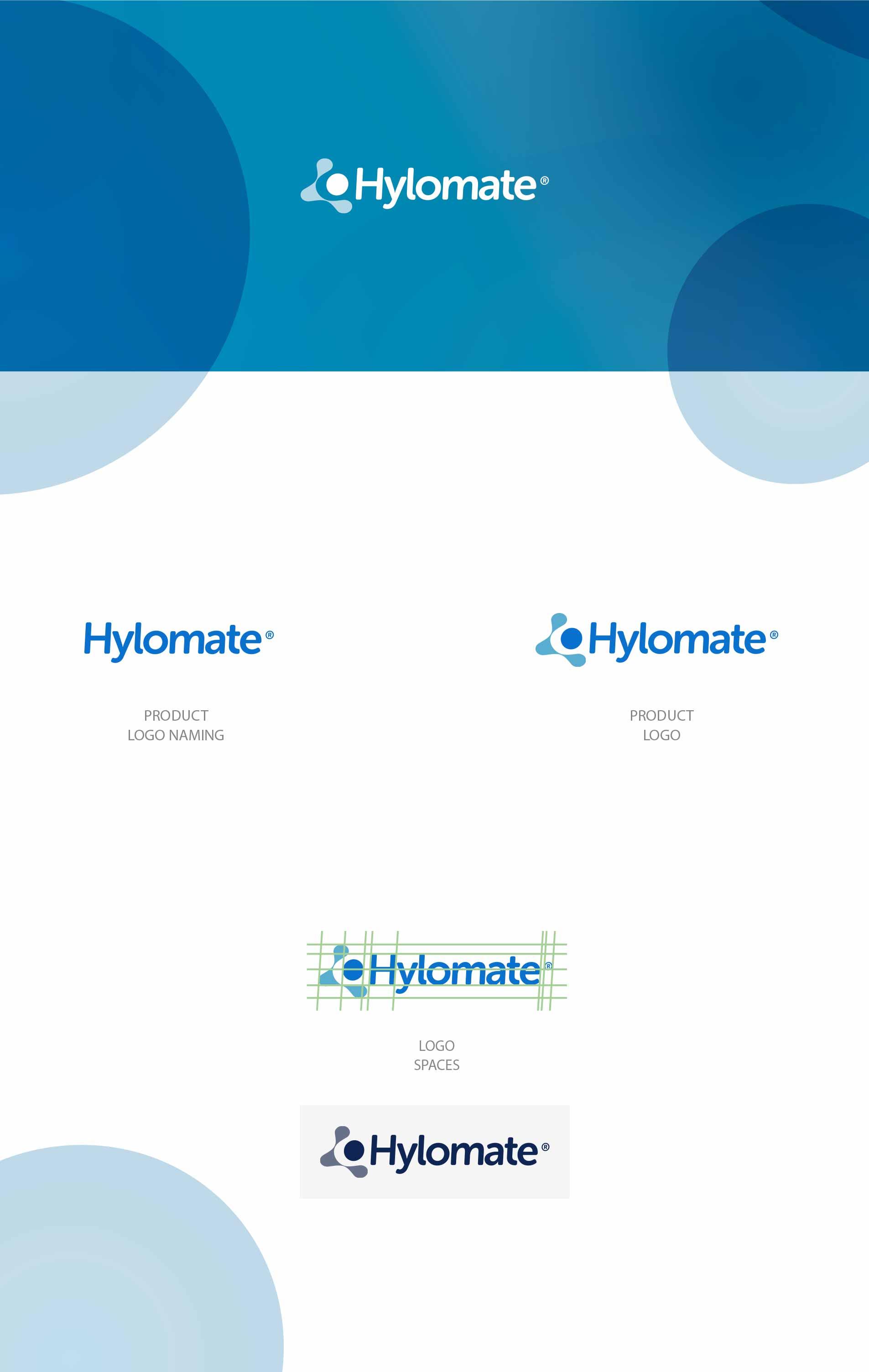 Design logo prodotto idea